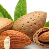 almonds-bg